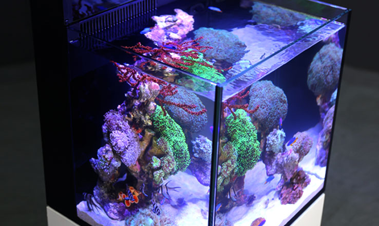 Red Sea Max Nano Aquarium Only