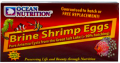 Brine Shrimp Eggs