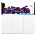 WATERBOX CRYSTAL PENINSULAR - LIVING REEF AQUARIUMS